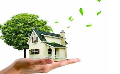 家装除甲醛有哪些使用有趣无污染的小妙招吗
